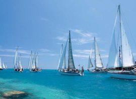 bermuda sailing